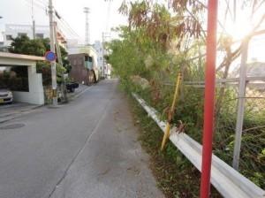 お店の前の道その後